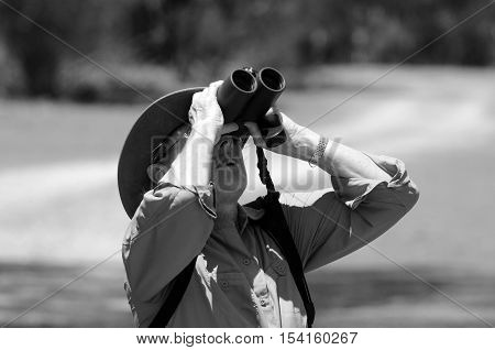 Mature woman birdwatching watching through binoculars in Coombabah Lake Conservation Park IN Gold Coast Australia (BW) poster