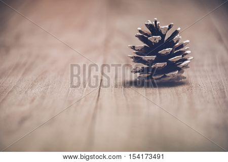 studio shot of pinecone,isolated on wooden plank.