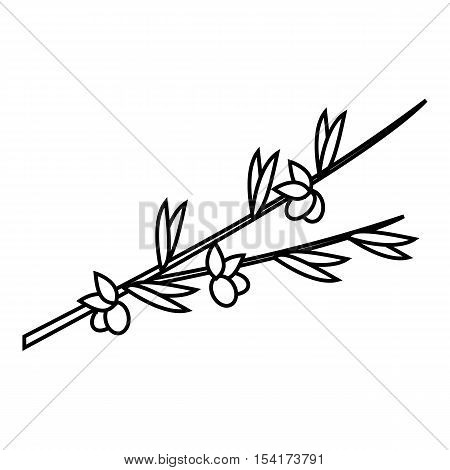 Olive branch icon. Outline illustration of olive branch vector icon for web