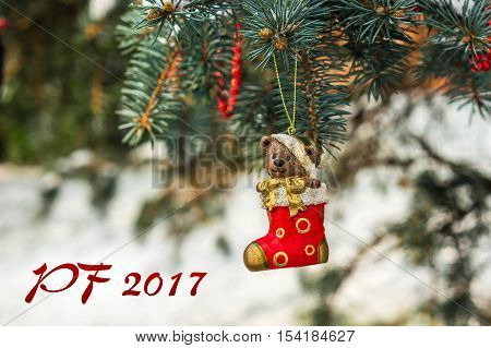 Pf 2017 - Teddy Bear And Red Sock, Christmas Toy On A Christmas