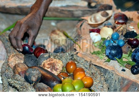 Yirrganydji Aboriginal Woman Hand Assorting Fruit And Seeds Food Eaten By The Indigenous Australian