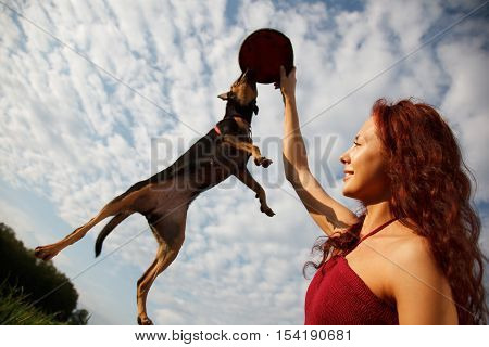 Beautiful young woman playing with her dog in park.Dog is jumping for her Plastic disc