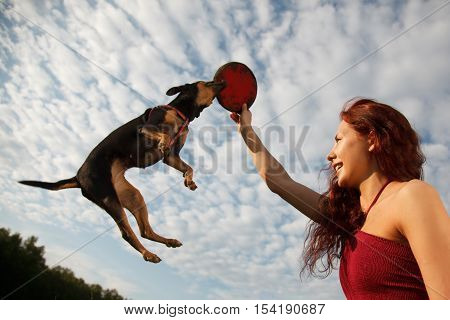Beautiful young woman playing with her dog in park. Dog is jumping for her Plastic disc