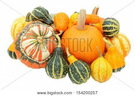 Group Of Autumnal Gourds - Pumpkins, Turban Squash And Ornamentals