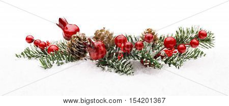 Christmas Red Berry Branch Decoration Holiday Xmas Berries Isolated on Winter Snow