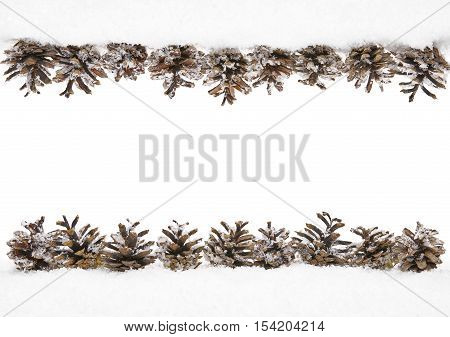 Cones Snow Winter Frame of Pine Cone Border Decoration Isolated on White background