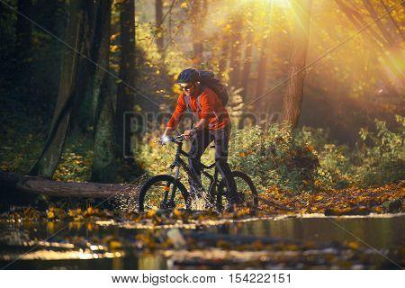Bike Ride in the Autumn Season Forest. Caucasian Men on the Mountain Bike