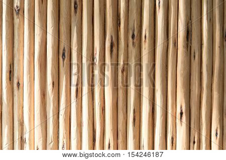 Wood wall background, textures - Stock Photo