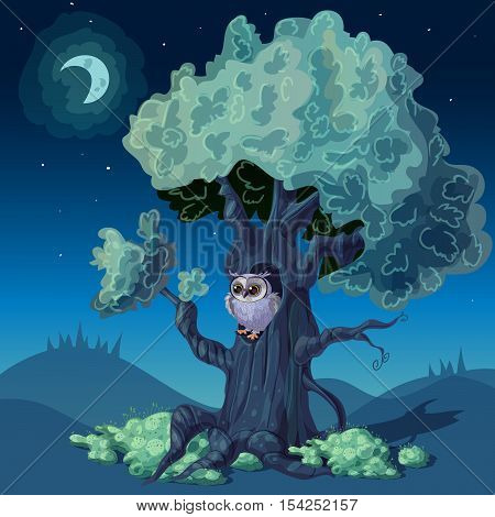 Night forest design with owl in hollow of deciduous tree under starry sky vector illustration