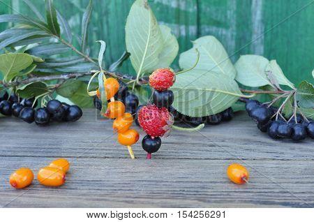 Black chokeberry, sea buckthorn and  strawberries, strung on sticks.