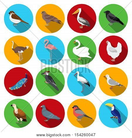 Bird set icons in flat style. Big collection of bird vector symbol stock