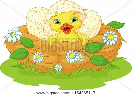 Cute duckling hatched in the nest, EPS 8