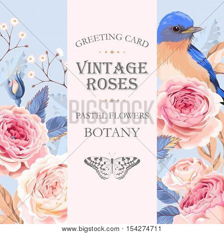 Vector greeting card with vintage roses and the bird