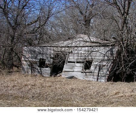 An old abandoned nestled in the trees.