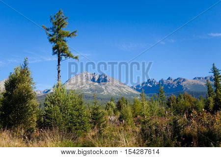 Beautiful Gerlach view in slovakian high Tatra mountains. Summer panorama with great weather and blue sky. Gerlachovsky stit