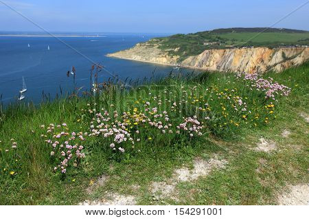 A view of the countryside overlooking Alum Bay on the Isle of Wight