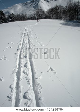 cross-country skier who makes a track when he leaves the path. Somport France