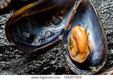 Closeup Of Raw Mussels On Black Rock
