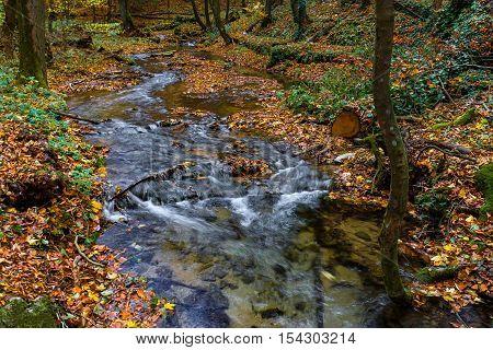 Autumn Landscape, silky rippling brook, radiate energy