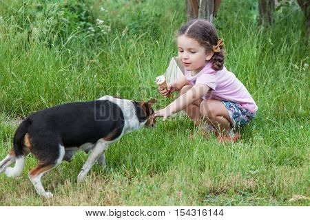 Happy little girl wants to caress mongrel dog outdoors