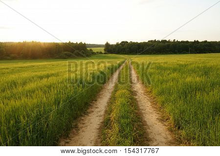 road, landscape, field, green, sky, dramatic, grass, horizon, panoramic