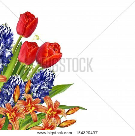 Flowers tulips lilies and hyacinths isolated on white background.