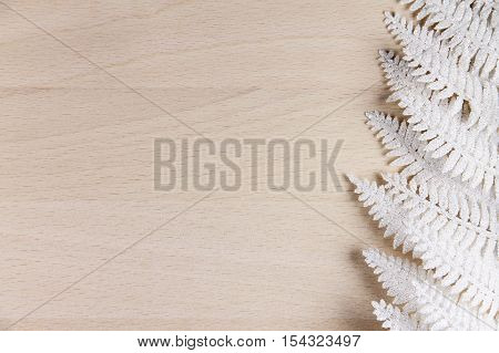 snow white fern on a wooden background