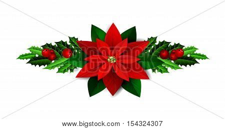Christmas decoration with evergreen trees holly and berries and poinsettia isolated