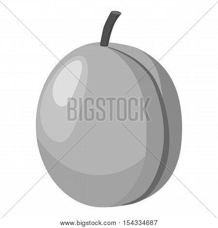 Peach icon. Gray monochrome illustration of peach vector icon for web
