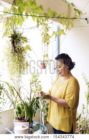 Planting Plantation Growth Housewife Activity Concept