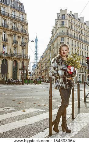 Fashion-monger With Christmas Tree Looking Into Distance, Paris