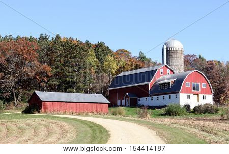 Wisconsin dairy farm with red barn silo and shed with fall colored trees in the background