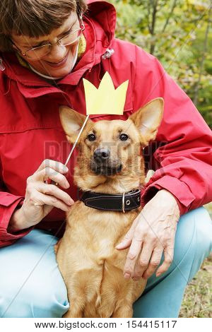 Old, smiling woman holding paper crown on stick close to dog's muzzle. Dog in funny, fake crown with owner in park.