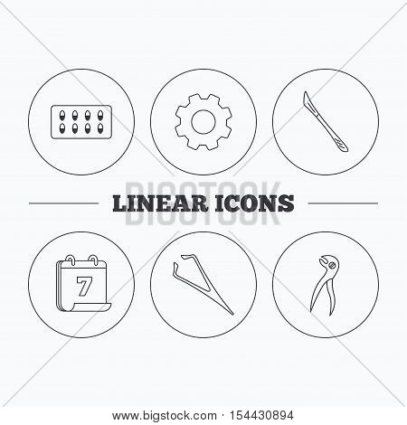 Scalpel, capsules and dental pliers icons. Eyebrow tweezers linear sign. Flat cogwheel and calendar symbols. Linear icons in circle buttons. Vector
