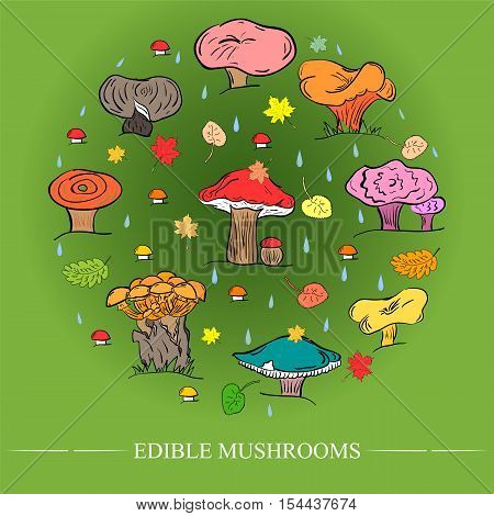 Set of Hand Drawn Cute Edible Mushrooms Autumn Falling Leaves and Drops Arranged in a Circle on Green Background. Flat Style.Vector Illustration.
