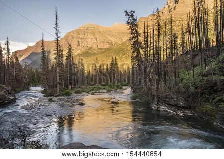 View of St. Mary River behind St. Mary Falls in Glacier National Park Montana United States.