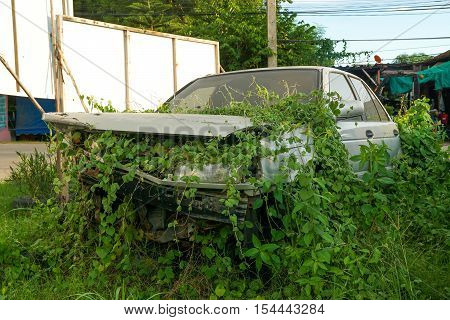 rustic  car  and damaged car wreck in overgrown grasses