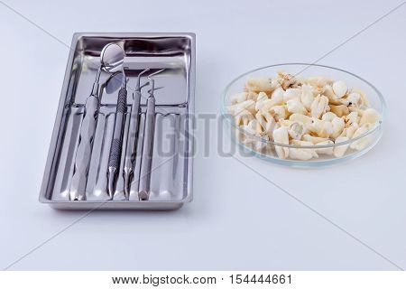 Dental instruments and teeth. Dentista s instrument in silver dish and teeth in glass plate are laying on hospitala s table on white background.
