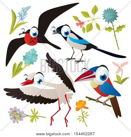 vector cute colorful cartoon isolated birds and flowers illustrations collection: frigate, stork, aracari, magpie
