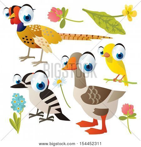 vector cute colorful cartoon isolated birds and flowers illustrations collection: pheasant, canary, woodpecker, goose