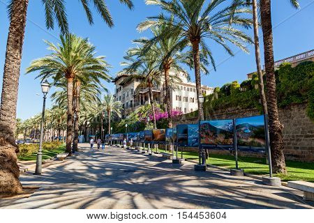 Spain 23 June Palma de Mallorca street. Palma de Mallorca street on a sunny day on which walk about slowly vacationers. On both sides of the street are growing huge palms and on the right side can be seen colorful photos of sights of Mallorca