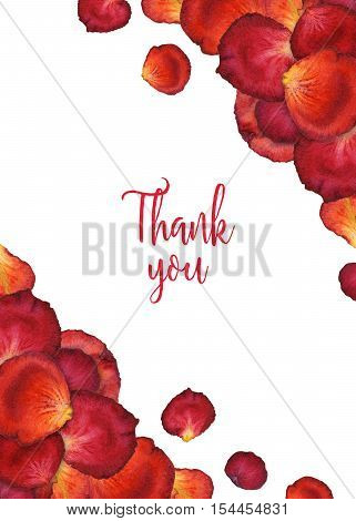 Watercolor background of flower rose petals with world thank you, red watercolour floral frame, hand painted illustration for greeting card, invitation, wedding, save the date, card, holiday
