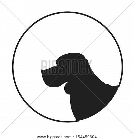 Silhouette of a dog head beagle. Young purebred doggy. Vector illustration