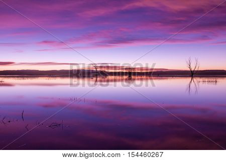 sunrise refection at Bosque del Apache in New Mexico poster