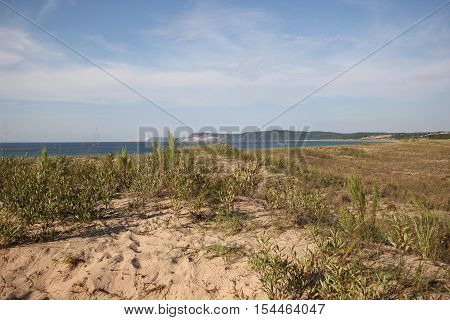 Sand dunes near Lake Michigan.  Sleeping Bear Dunes National Lakeshore, Michigan