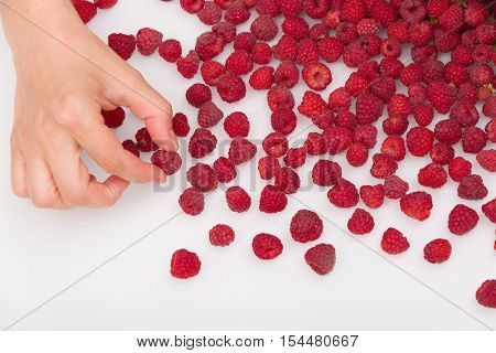 Top view on woman's hand picking fresh organic raspberries from white table. Summer berries on white glass background. Healthy dessert or snack. Summer and healthy food concept