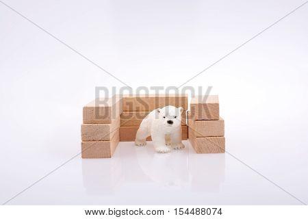 Polar Bear And The Bullding Blocks