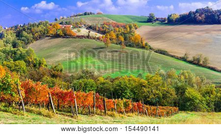 Autumn landscape - vineyards and sunny hills of Piemonte, Italy