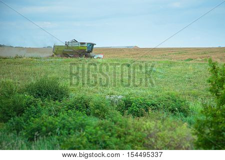 Agriculture. Wheat harvest . Combine harvester on a wheat field gathering grain harvest