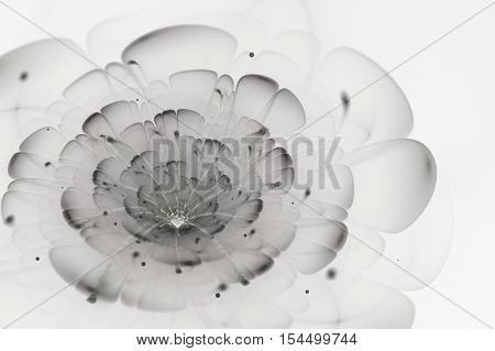 Abstract white background with dark and light grey flower in backlight texture fractal pattern